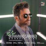 کاور آهنگ Mohammad Sarmadi - Moohaye Tire