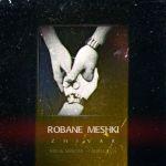 کاور آهنگ Zhivar - Robane Meshki