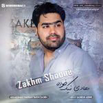 کاور آهنگ Hadi NikKhah - Zakhm Shoone