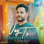کاور آهنگ Mohammad Shahnavaz - Vay To