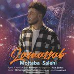 کاور آهنگ Mojtaba Salahi - Lamassab