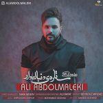 کاور آهنگ Ali Abdolmaleki - Setareye Donbaleh Dar