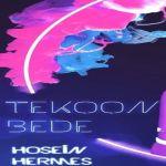 کاور آهنگ Hosein Hermes - Tekoon Bede