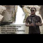 کاور آهنگ Saeed Shayas - Kassa Kam