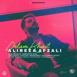 کاور آهنگ Alireza Afzali - Delam Khast