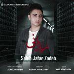 کاور آهنگ Saleh JafarZadeh - Zendooni