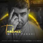 کاور آهنگ Mehdi Panahi - Tanhaii