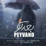 کاور آهنگ Peyvand - Bad To