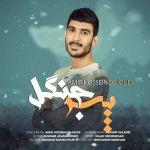 کاور آهنگ Amir Hossein Sojoudi - Pesare Jangal
