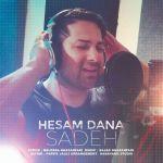 کاور آهنگ Hesam Dana - Sadeh