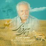 کاور آهنگ Mahmoud Tamizi - Ahooye Farari