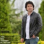 کاور آهنگ Mohammad Zamiri - Tavahom