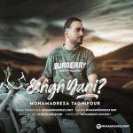 کاور آهنگ MohammadReza TaghiPour - Eshgh Yani