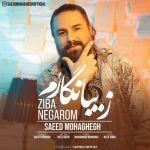 کاور آهنگ Saeed Mohaghegh - Ziba Negarom
