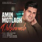 کاور آهنگ Amin Motlagh - Delshooreh