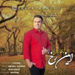 کاور آهنگ Amin Rokh - To Faghad Bash