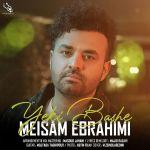 کاور آهنگ Meysam Ebrahimi - Yeki Bashe