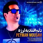 کاور آهنگ Peyman Mousavi - Delm Oftad Be Larze