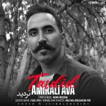 کاور آهنگ Amirali Ava - Tardid