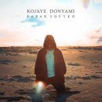 کاور آهنگ Babak Sheykh - Kojaye Donyami