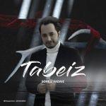 کاور آهنگ Soheil Fadaie - Tabei