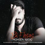 کاور آهنگ Mohsen Nataj - Bi Ehsas