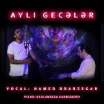 کاور آهنگ Hamed Barzegari - Ayli gecalar