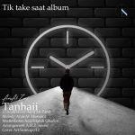 کاور آهنگ Amirali Zand - Tanhaii