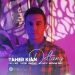 کاور آهنگ Taher Kian - Deltang